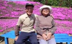 Giardino giapponese: marito pianta più di 100 fiori per la moglie cieca