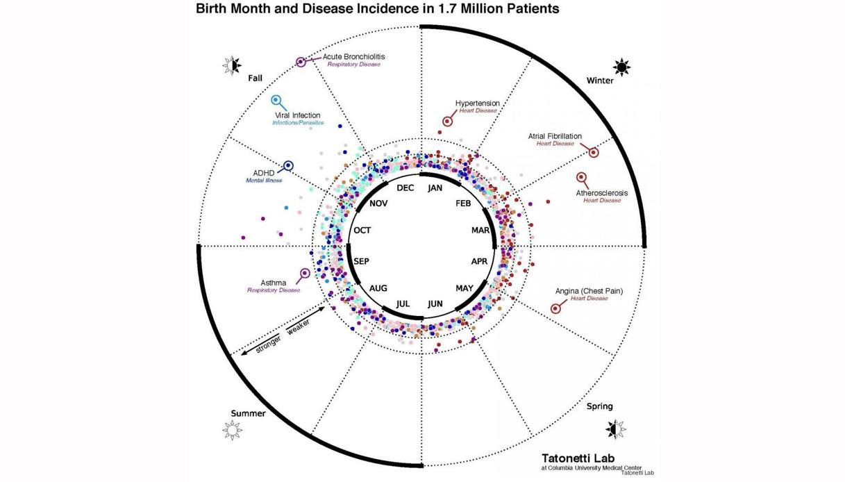 malattie-mesi-1217