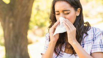 Allergie: il calendario dei pollini in Italia