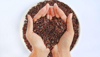 Riso rosso fermentato, un alleato contro il colesterolo alto