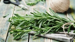 Le erbe nel piatto. Il rosmarino contro i chili di troppo