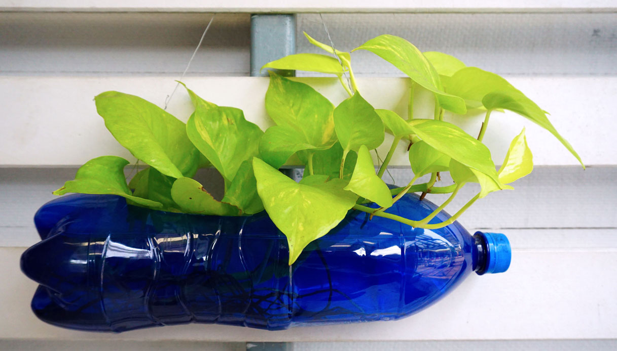Idee Per Vasi Da Fiori vasi per fiori fai da te: idee ed ispirazioni da copiare | dilei