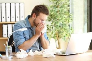 Allergia polvere