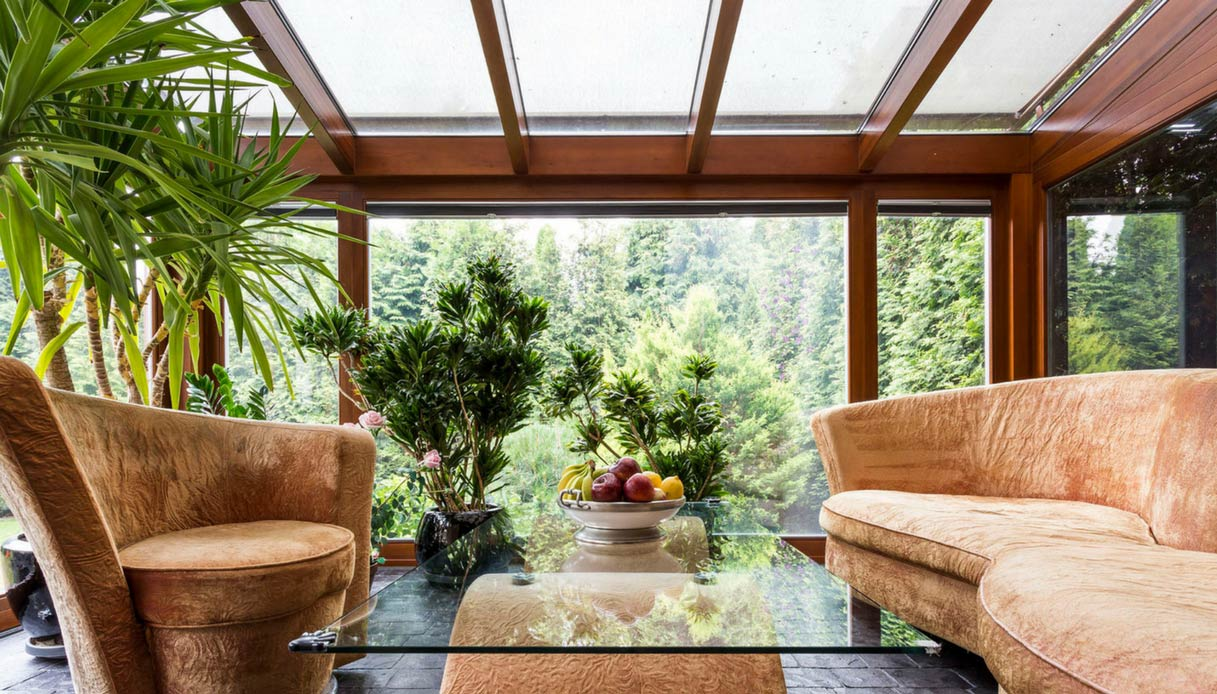 Piante Da Arredo Appartamento come decorare la casa con le piante | dilei