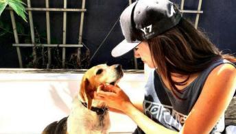 Meghan Markle, il cane salvato dalla principessa