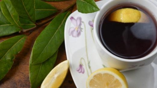 Infuso di alloro, il potente rimedio naturale contro tosse e raffreddore (e non solo)