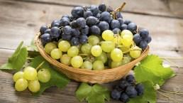 La dieta dell'uva o ampeloterapia. Cosa mangiare durante la giornata