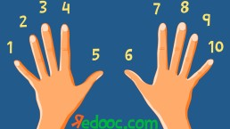 Impara le tabelline (con le dita)