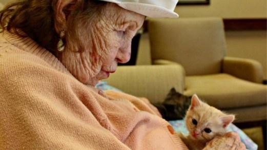 La morte silenziosa degli anziani