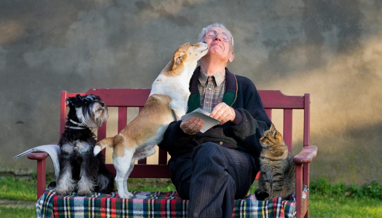 anziano con cani e gatto