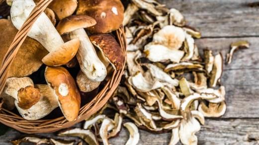 Funghi: calorie, proprietà ed effetti sulla dieta