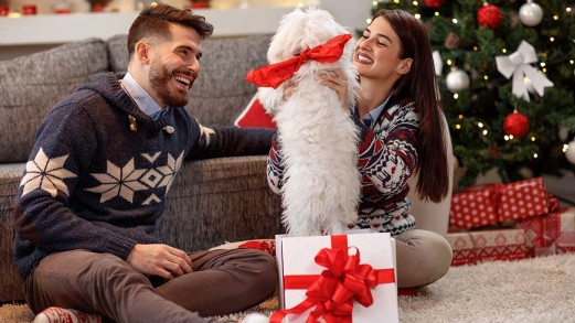 Non regalare un cane a Natale
