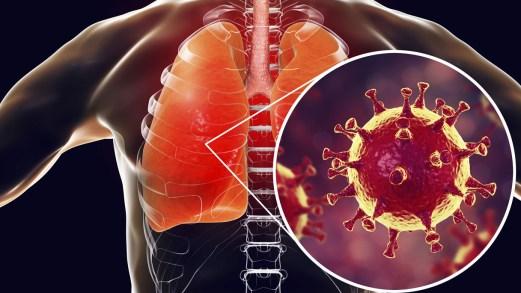Il Coronavirus Sars2-CoV-19 è in Italia. Cosa bisogna sapere