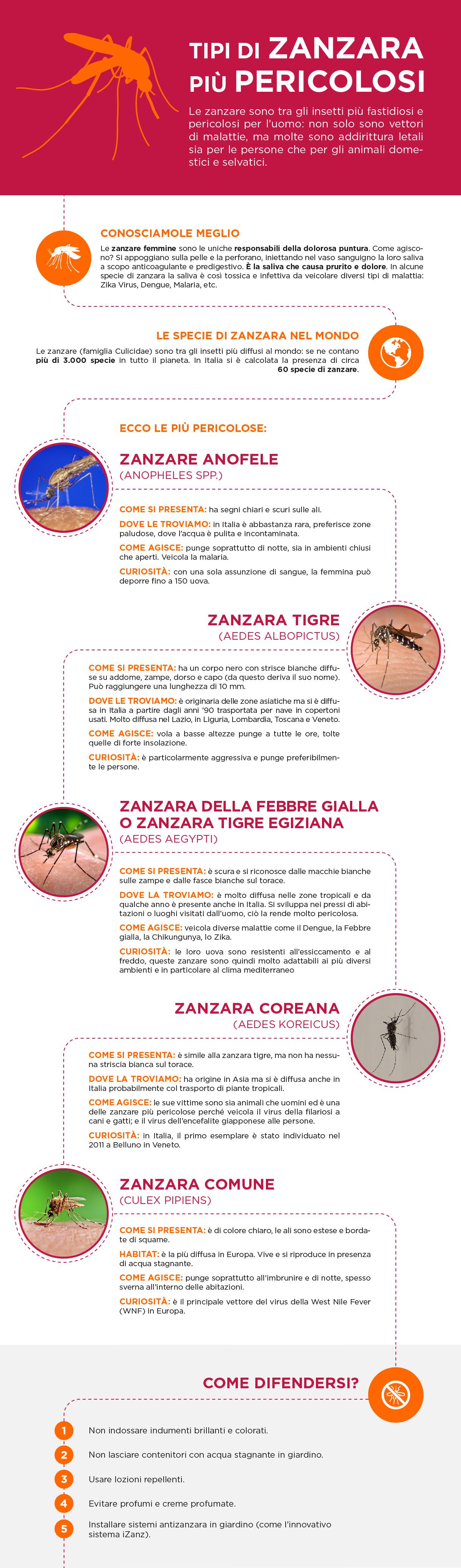 le zanzare più pericolose
