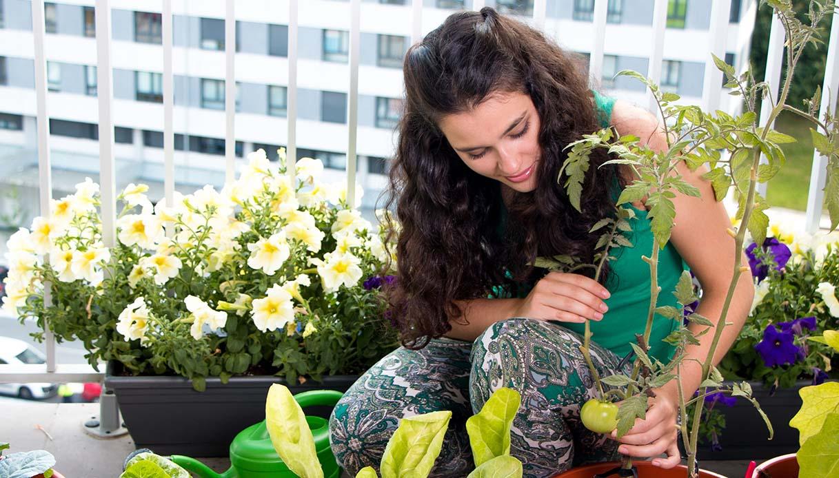 prendersi cura delle piante fa bene all'anima