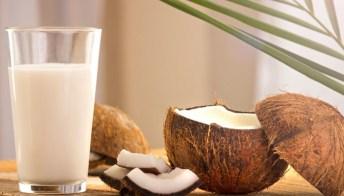 Latte di cocco, gli effetti sul peso e sul metabolismo