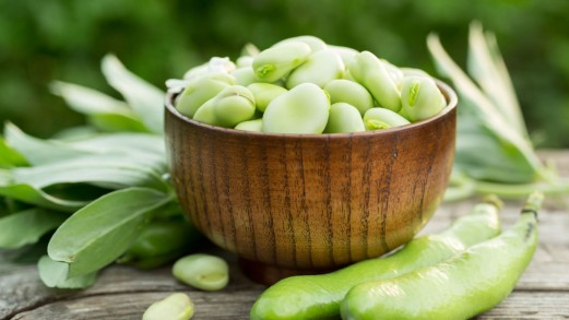 Fave, i legumi speciali che proteggono il cervello
