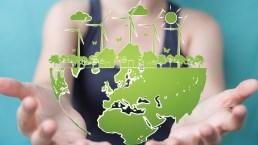 Come aiutare l'ambiente? 12 consigli per una vita più sostenibile