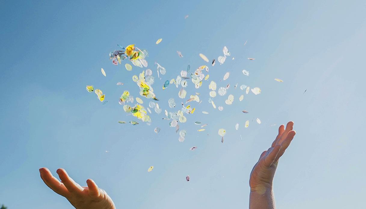 confetti biodegradabili