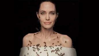 Angelina Jolie ricoperta dalle api, per sostenere la loro salvaguardia