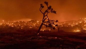Chi sono gli esuli ambientali e perché nessuno è più al sicuro