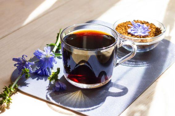 Caffè di cicoria: benefici, controindicazioni e come si prepara