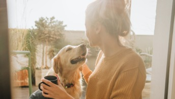 Insieme per sempre: cani e padroni sepolti nella stessa tomba