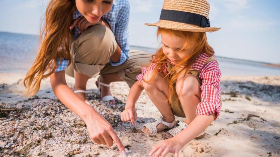 Conchiglie e ricordi dal mare: ecco perché vanno lasciati dove sono
